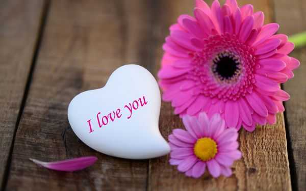 Short love Quotes Everyone love this Beautiful words I love You Quotes about love