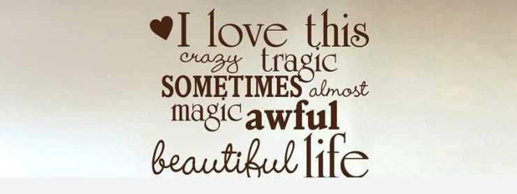 love Quotes I love This magic Beautiful life love phrases