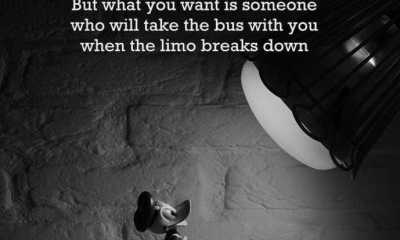 Best Friendship Quotes You Choose Which Ride with you in life of Friendship