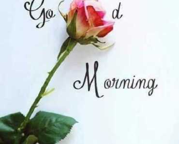 Good Morning Quotes Life Sayings Let It Be Live, Good Morning