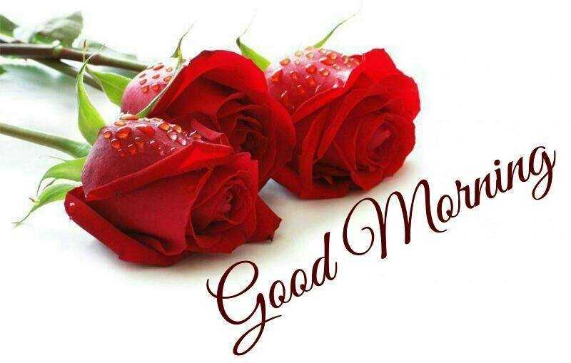good morning quotes love messages good morning let me like you