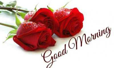 Good Morning Quotes Love Messages Good Morning Let me