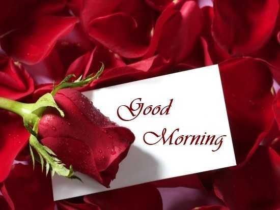 Good Morning Quotes Love Sayings True Love Not Fill Heart Over