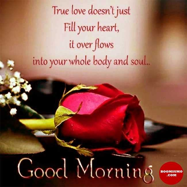 Good Morning Quotes Love Sayings True Love Doesnt Just Fill Your