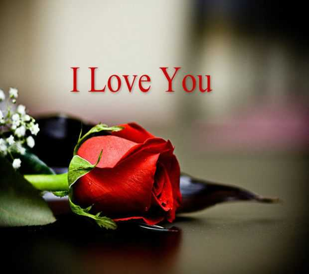 Love Quotes About love Sayings Truth Is, Always I Love You