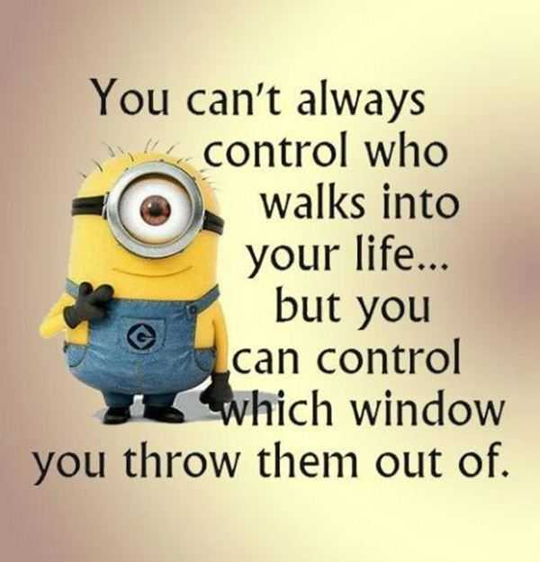 Life Funny Quotes Stunning Best Funny Quotes You Can't Control Who In Your Life You Can