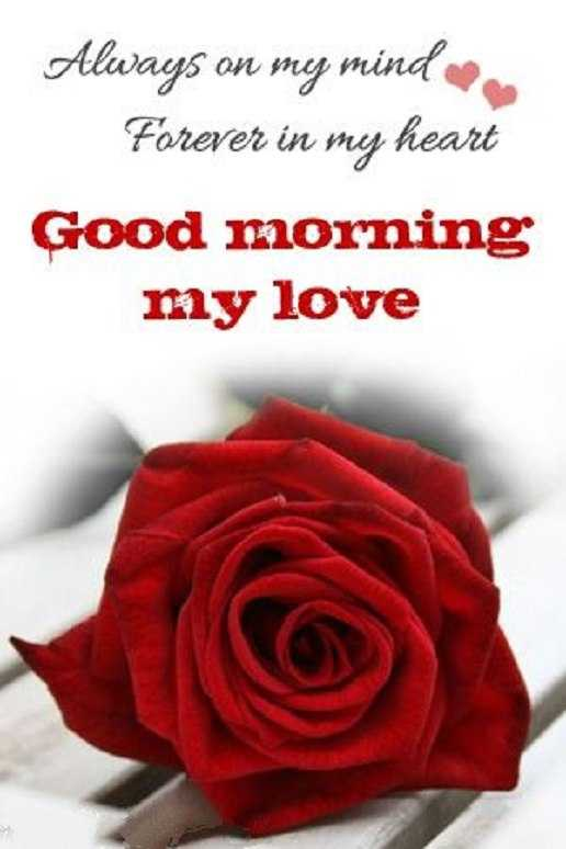 Good Morning Quotes Forever My Heart My Love Good Morning