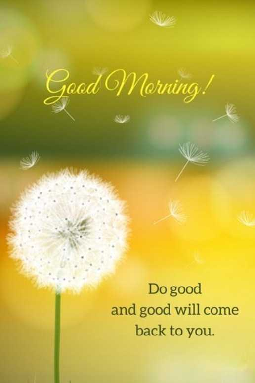good morning quotes life sayings good morning do good and good will come back