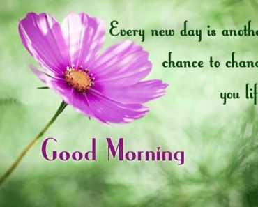 Good Morning Quotes Life sayings Good Morning Every New Day