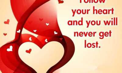 Inspirational Love Quotes Love messages Follow Your heart