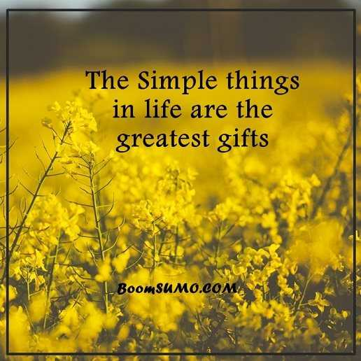 Positive Life Quotes: Life Sayings Simple Life Things Are Greatest Gifts,  Keep Going
