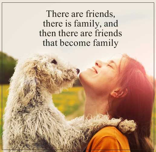 Short Friends Quotes: Friends That Become Family, When They Are