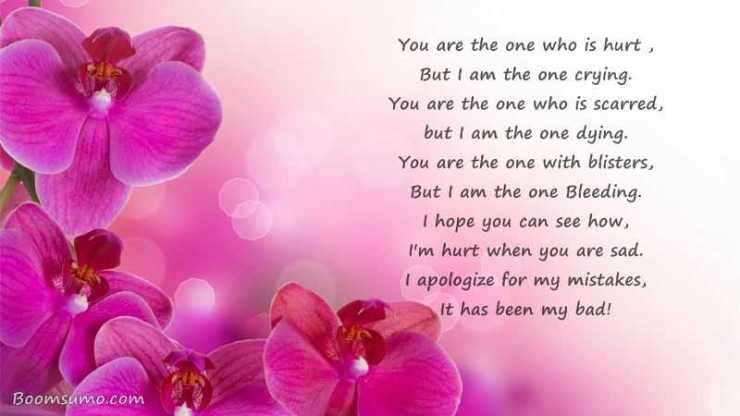 You Are The One Who Is Hurt Sad Love Quotes Sayings