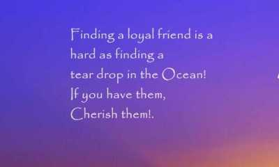 Best Friendship Quotes Finding a loyal friend, keep it