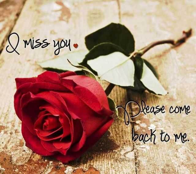 Miss You Sad Love Quotes: Sad Love Quotes I Miss You Please Come Back To Me