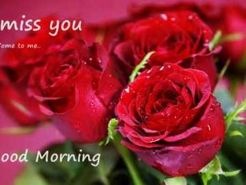 Good Morning Quotes About Love Come To me I Miss You