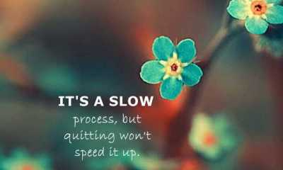 Positive Life Quotes Slow Process, but Quitting Won't