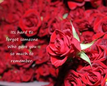 Sad Love Quotes About Love Forgot Someone