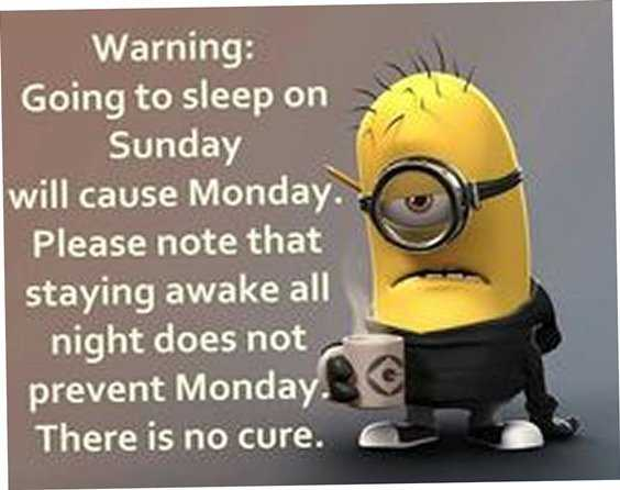 Top 79 Funny Minions Quotes and Funny Pictures 7