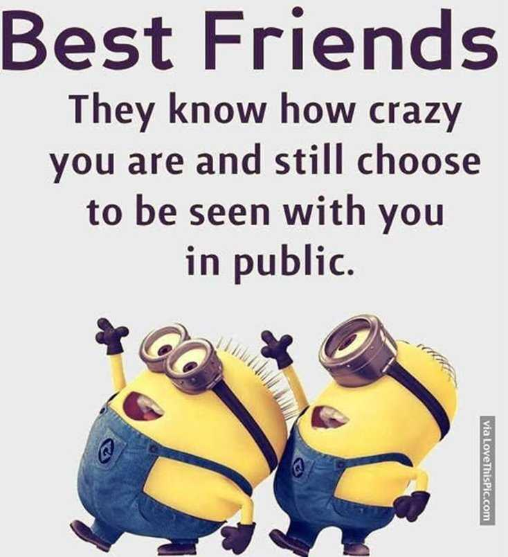 24 Funny Quotes Motivational That Will Inspire You — Minions Quotes 21