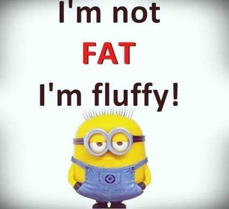 50 Best Funny Minion Quotes Funny Quotes Life 17