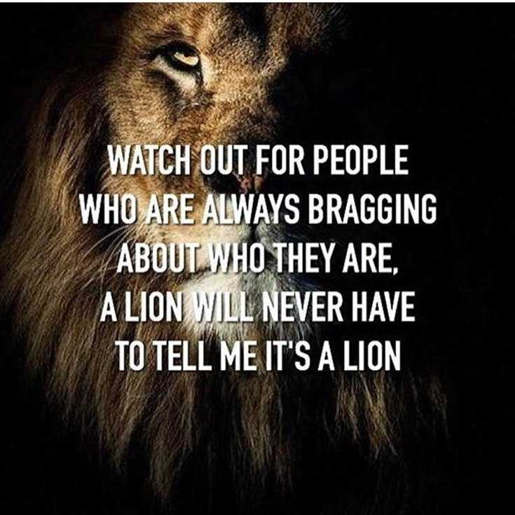 58 Motivational Quotes Quotes About Success 24