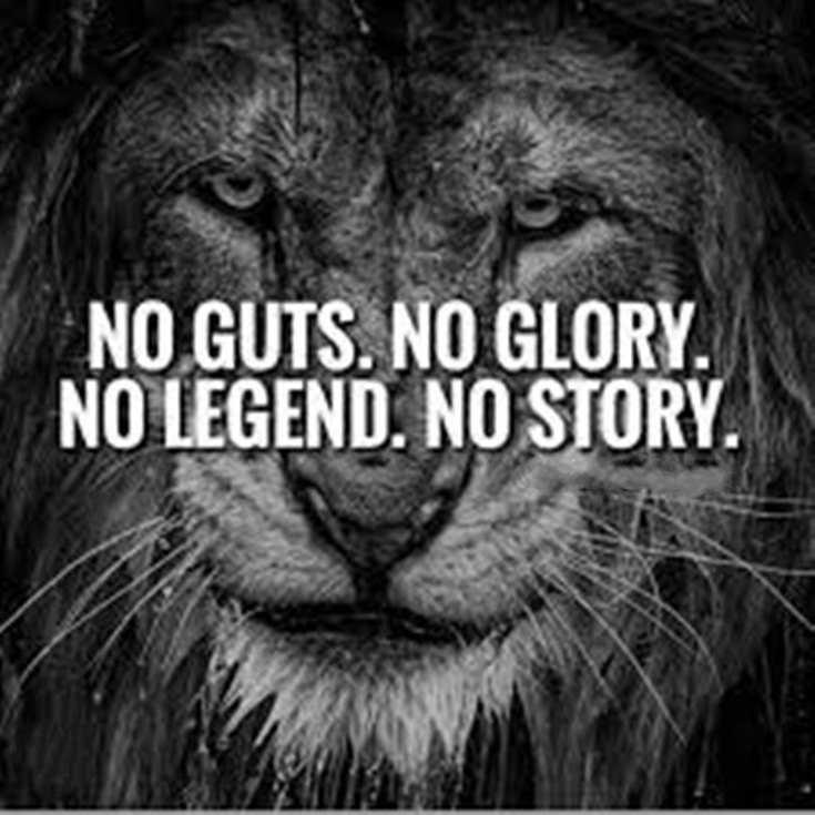 58 Motivational Quotes Quotes About Success 28