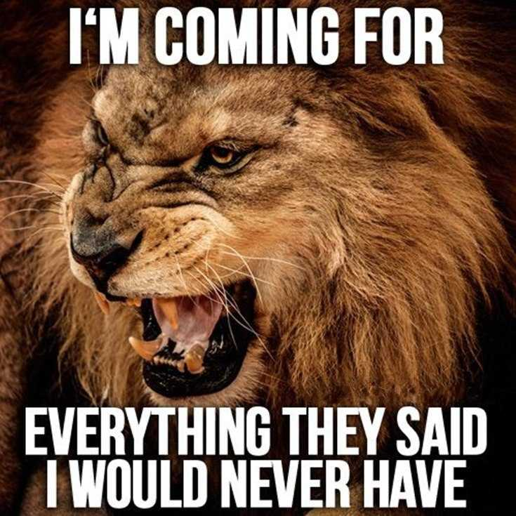 58 Motivational Quotes Quotes About Success 31
