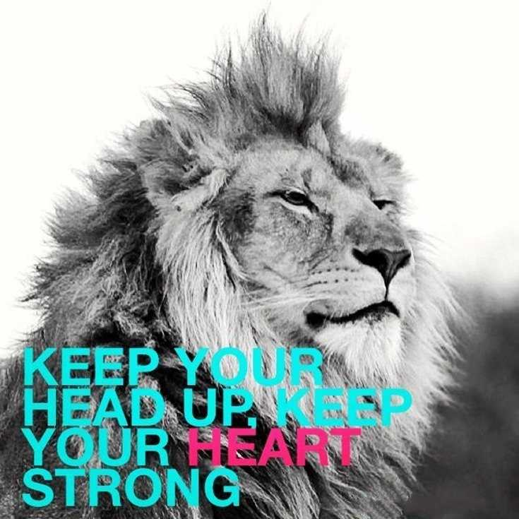 58 Motivational Quotes Quotes About Success 36