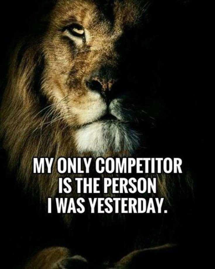58 Motivational Quotes Quotes About Success 38