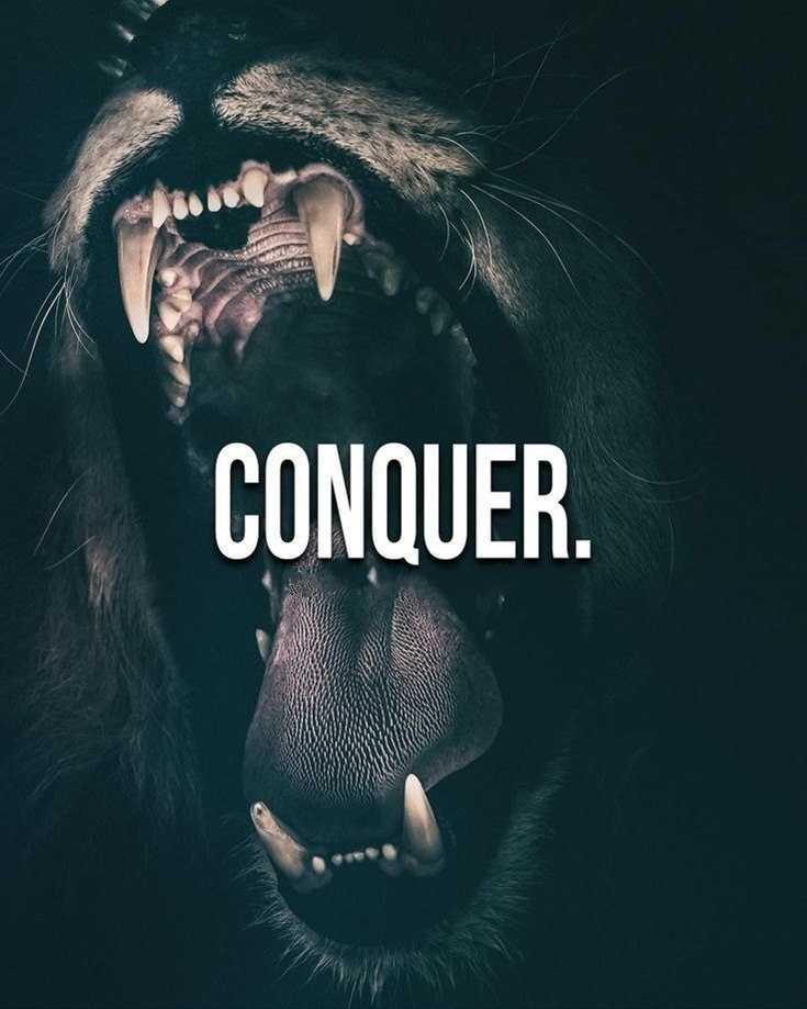 58 Motivational Quotes Quotes About Success 47