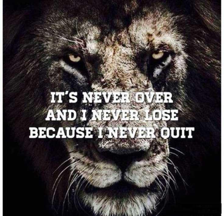 58 Motivational Quotes Quotes About Success 9