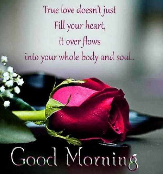 28 Good Morning Quotes for Her With Beautiful Images 18