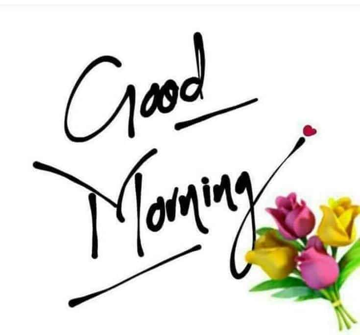 Best Good Morning with beautiful