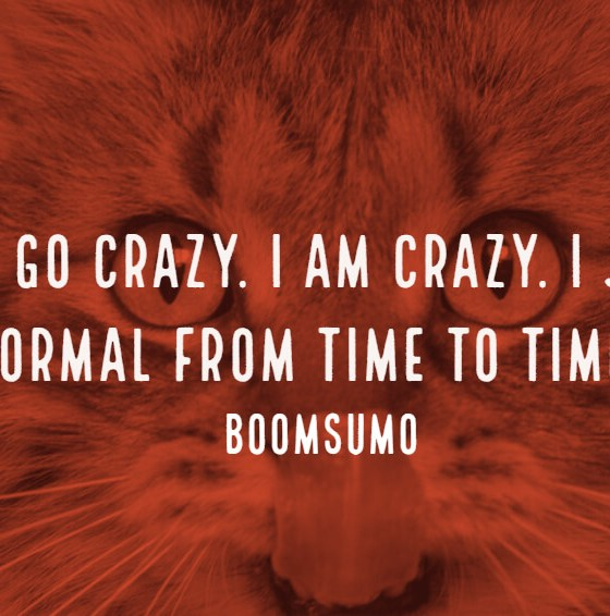 78 Funny Quotes And Sayings To Make You Laugh Out Loud
