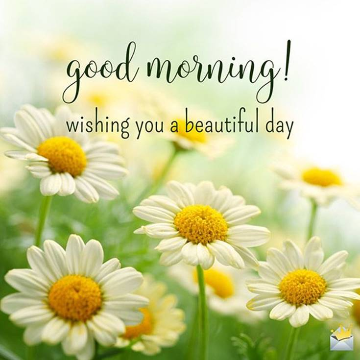 38 Good Morning Quotes and Wishes with Beautiful Images 10