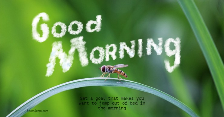 38 Good Morning Quotes and Wishes with Beautiful Images
