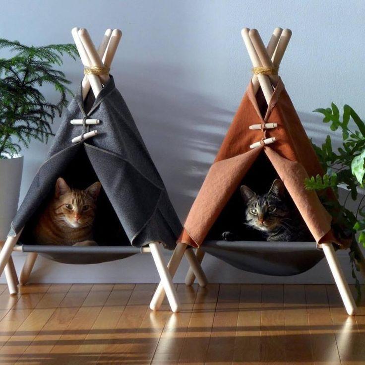 Pet Furniture Thrift Store