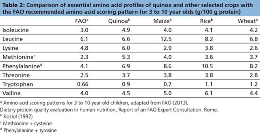 Perché tutti vogliono la quinoa