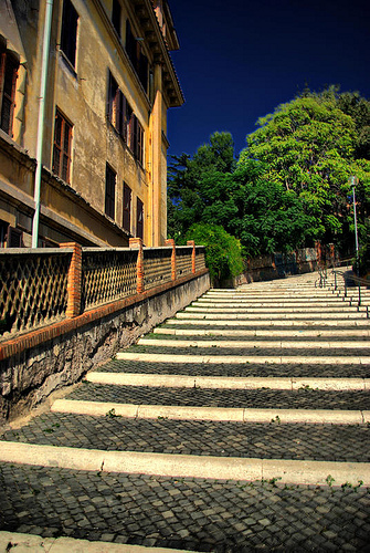 What Do You See Most Trainers At The Park Using A Large Step Or A Set Of Stairs  For? Dips, Step Ups, Sometimes The Occasional Feet Elevated Pushup Or ...