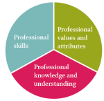 Professional (6)