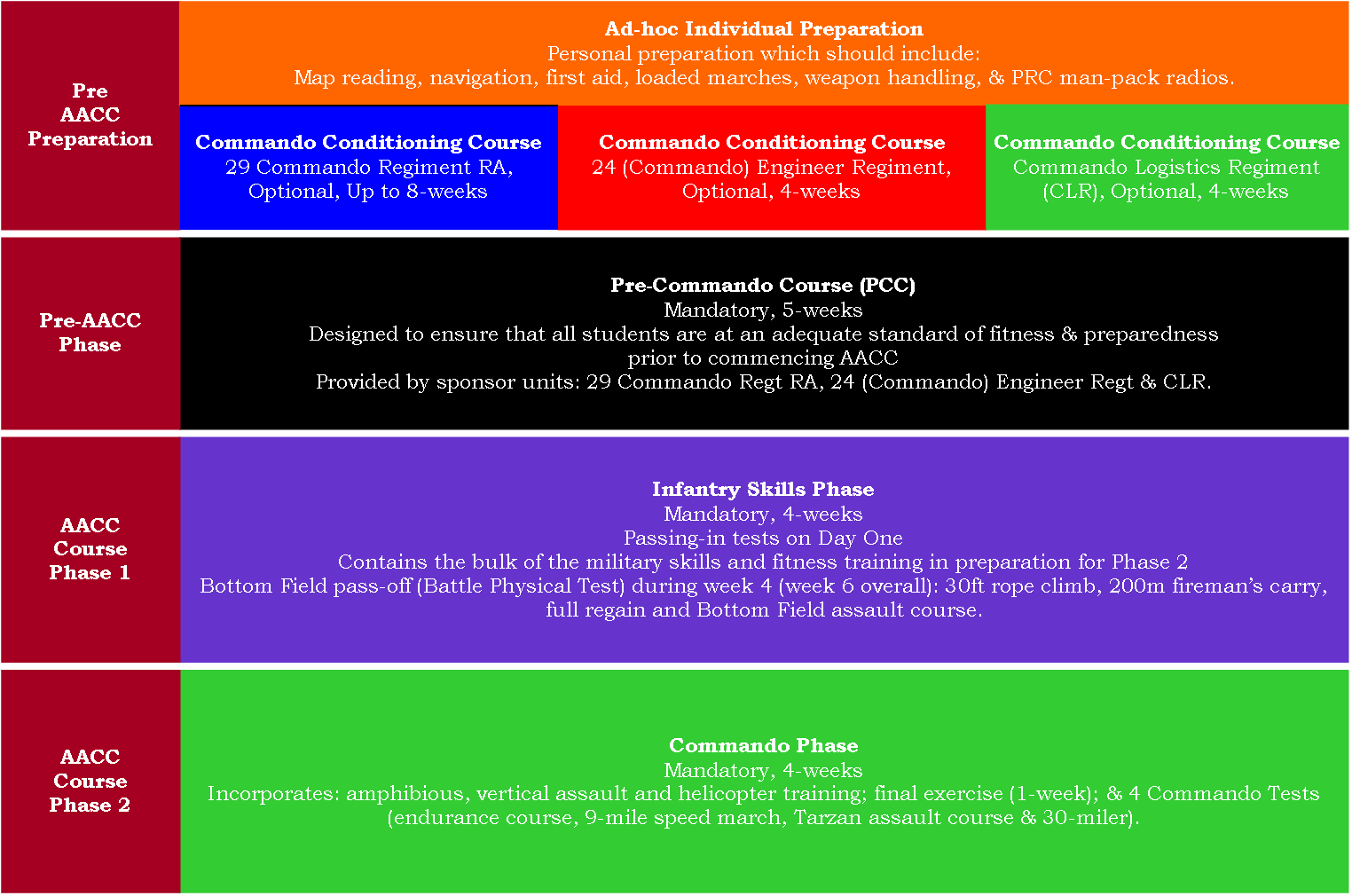 Regulation Coloured RM Commando Dagger Badge