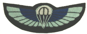 SBS Wings (Current)