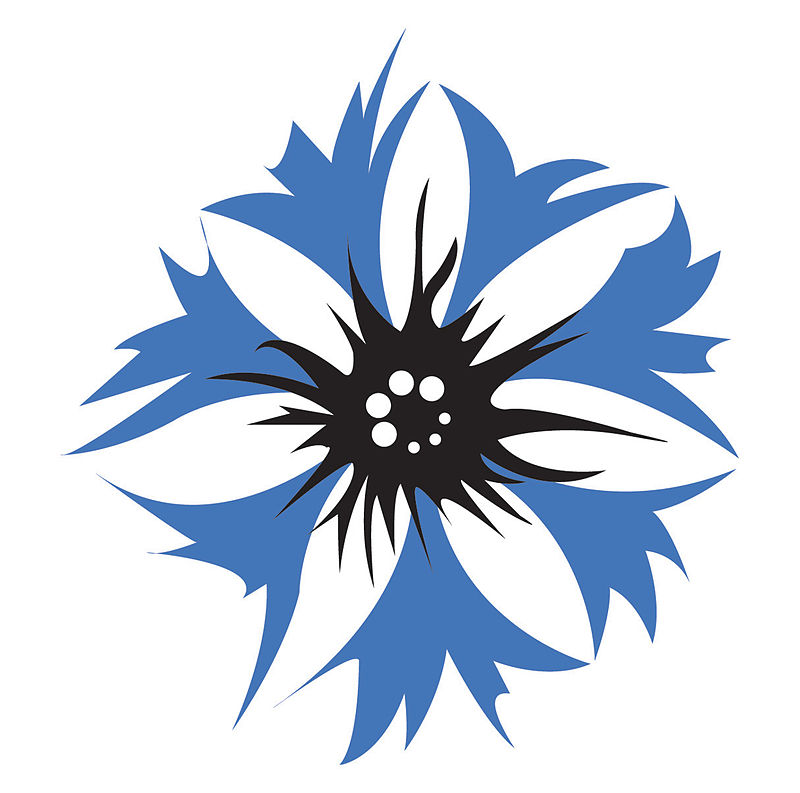 The cornflower is the official flower and logo of the German-American Steuben Parade in New York