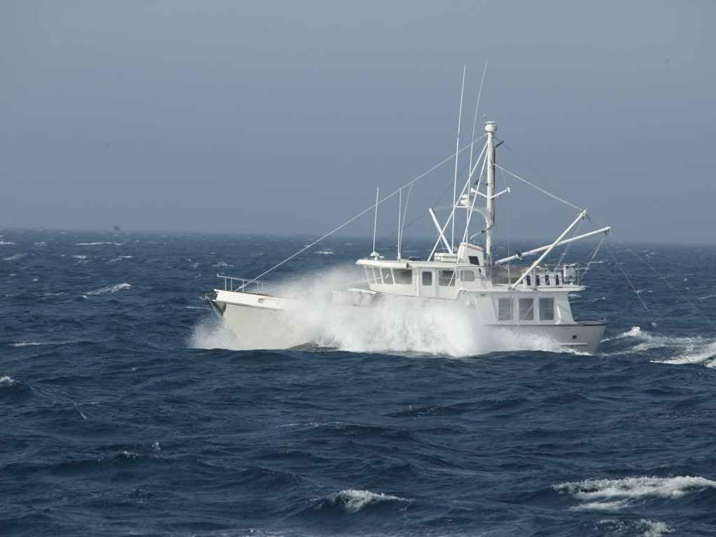 Segelboot oder Motorboot? Auch unter Motor kann man auf offener See unterwegs sein!