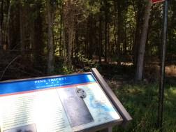 Pine Thicket Civil War Trails Marker 1