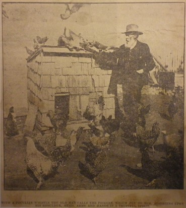 Arnold and his Feathered Friends 1902