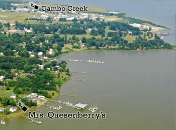 Quesenberry Gambo Creek Aerial
