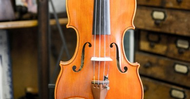 Violin-1502-Front-700-feature-390×205