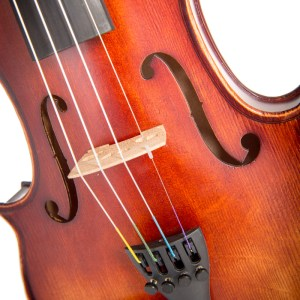 Intermediate Violins